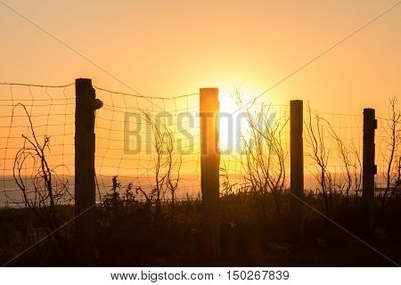 silhouette of fencing along the coast at sunset in Cadiz Spain