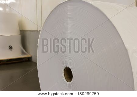Paper Roll Industrial Printing White Blank Cardboard Tube Detail Closeup
