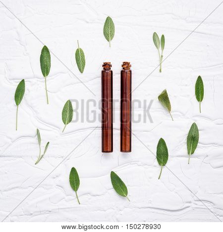 Closeup  Fresh Sage Leaves With Aromatic Oil On White Wooden Background . Alternative Medicine Fresh