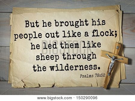 TOP-1000.  Bible verses from Psalms.But he brought his people out like a flock; he led them like sheep through the wilderness.