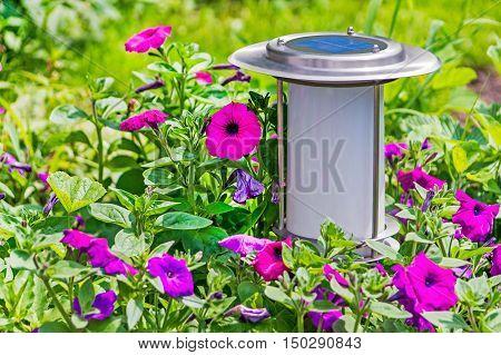 Solar-powered garden lamp on flowers garden background. Closeup.