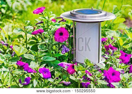 Solar powered garden lamp beside flowers geraniums bed.