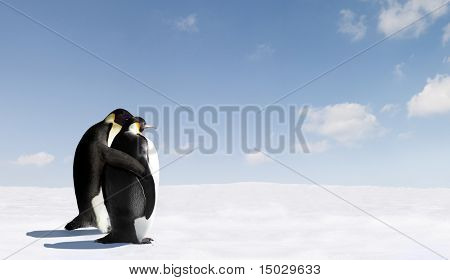 Pingüinos en el amor