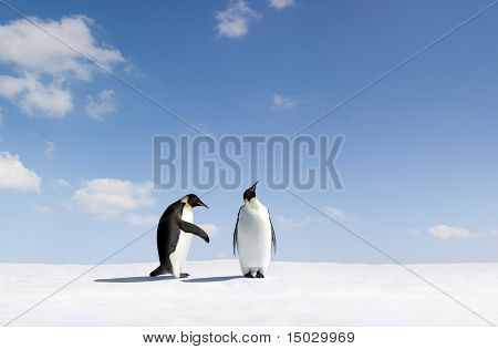 Penguin gets rejected