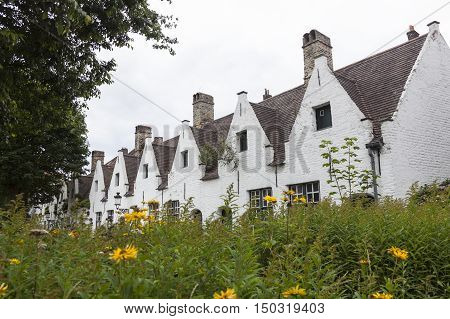 garden and old white houses for beguines in the old city of Brugge in Belgium