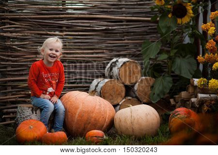 Girl Sitting On Pumpkins