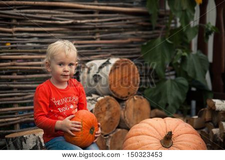 Girl Sitting On A Stump With Pumpkins
