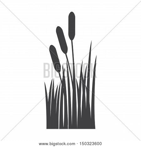 reed black simple icon on white background for web design