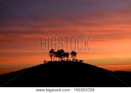 Sunrise over Colmer's Hill in Dorset AONB (Area of Outstanding Natural Beauty)