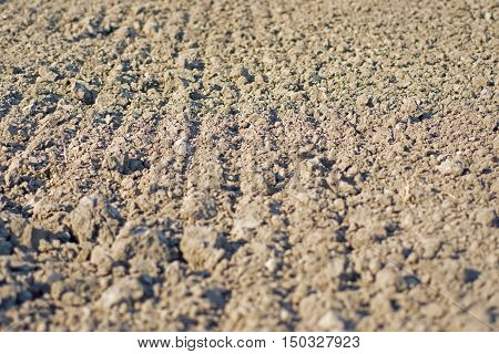 Ground Texture Background. Cultivated Fertile Land. Soil Background.