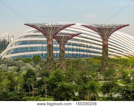 SINGAPORE, REPUBLIC OF SINGAPORE - JANUARY 09, 2014: Singapore city skyline. View of Supertree Grove Gardens by the Bay Singapore