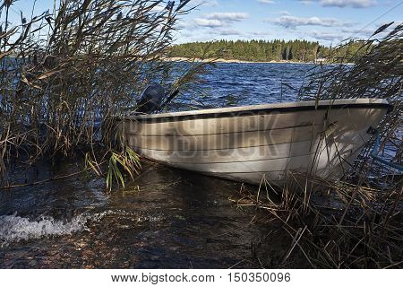 Boat and reed at a small lake in Serbia