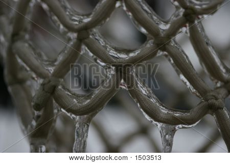 Icey Net