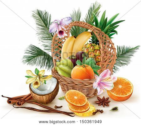Basket with tropical fruits and spices. Vector illustration