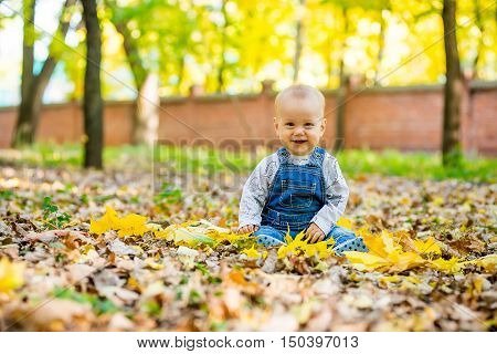 Happy happy baby sitting in the park with yellow leaves in autumn. In autumn park kid sitting in yellow leaves. Cheerful baby sitting in the park. Warm autumn day in the park.