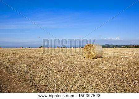 Straw Bales In Autumn