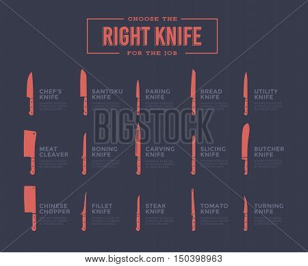 Big Set Of Kitchen Knives With Names. Vector Illustration.