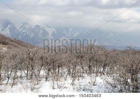 View of snow covered mountains and valley in Utah. Usa