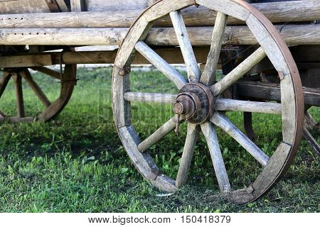 The old village cart on the grass