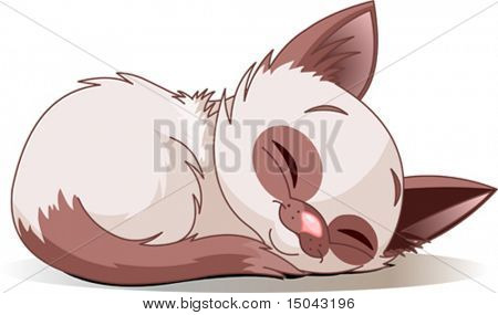 Vector illustration of sleeping cute Siamese kitten