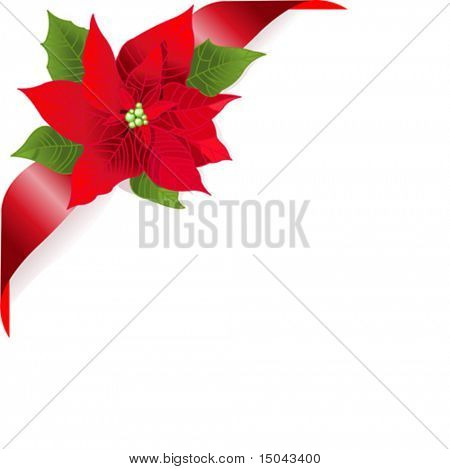 Page corner with red ribbon and poinsettia. Place for copy/text.