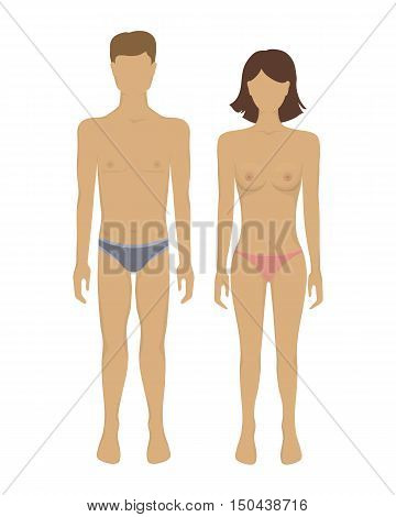 Man and woman body. Vector illustration with female and male body in underwear. Human anatomy. Isolated on white