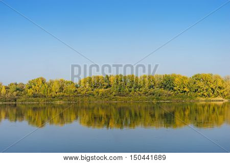 Autumn forest across the river sunny autumn day blue sky backgrounnd nature