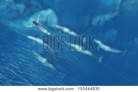 Women swimming with dolphins in the tropical sea. This is a 3d render illustration
