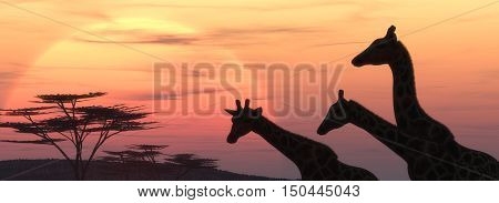 Giraffe silhouette at sunset. This is a 3d render illustration
