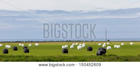 Hay Bales Sealed With Plastic Wrap