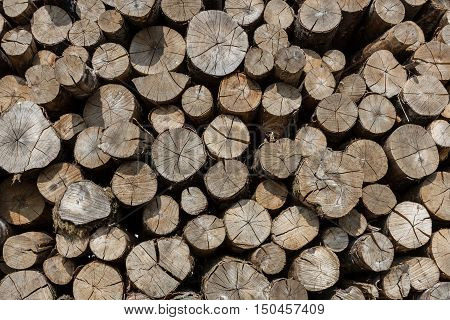 Background of a big pile of wooden logs. Stock for the winter.