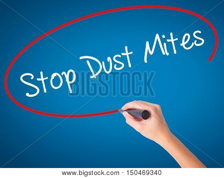 Women Hand Writing Stop Dust Mites  With Black Marker On Visual Screen.