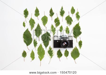 Vintage retro photo camera and green leaves pattern on white background. Flat lay top view. Creative arrangement of white dogwood leaves (cornus alba).