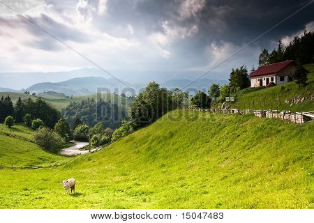 Beautiful Rural Landscape From Romania