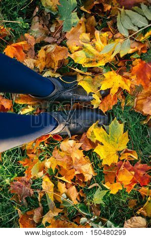 Female legs in leather boots and tights standing on ground with autumn leaves top view unusual perspective