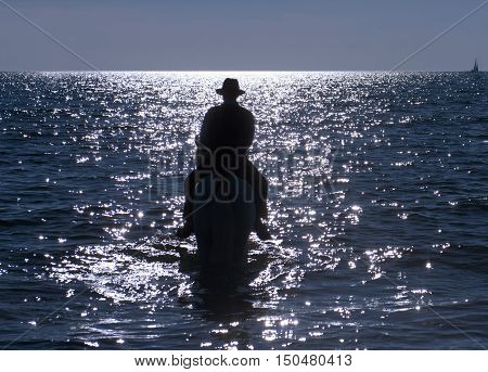 horse rider walking in the sea in evening