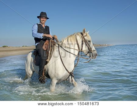 horseman and his Camargue horse in the sea