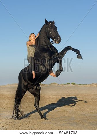 horse woman and rearing stallion on the beach