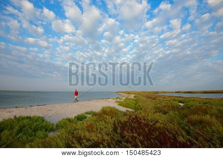 Man is walking along the wild beach at windy weather. Wide angle.