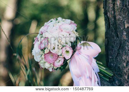 Wedding Bouquet Lying On Tree Branch