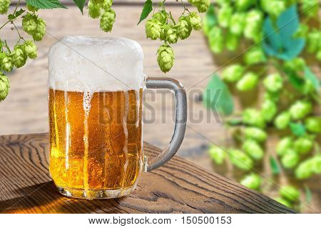 beer glass on the wooden table with hop cones