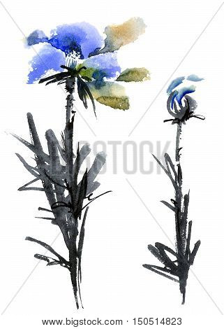Watercolor and ink illustration of blue flowers and leaves