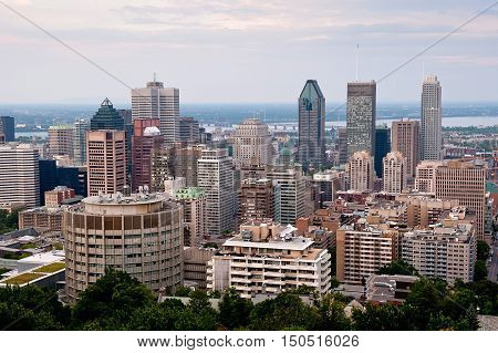 Montreal highrise - view from Mount Royal at daytime