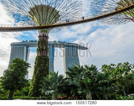 SINGAPORE, REPUBLIC OF SINGAPORE - JANUARY 09, 2014: Singapore city skyline. View of Supertree Grove and Marina Bay Sands Hotel. Gardens by the Bay, Singapore