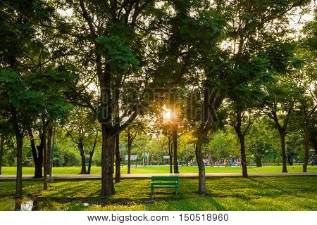 Sunset At Green City Public Park With Bench