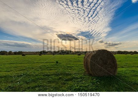 Field With Haystacks At Sunset In Early Autumn