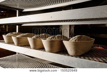 Raw leavened breads prepared on the rack before placing in the oven.