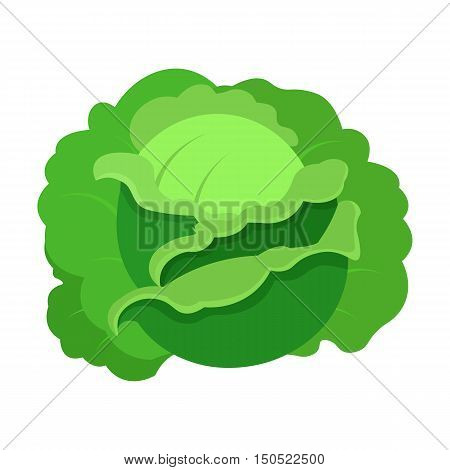 Cabbage icon cartoon. Single plant icon from the big farm, garden, agriculture collection.