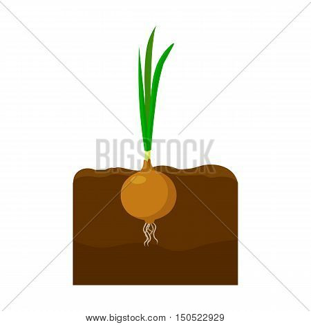 Onion icon cartoon. Single plant icon from the big farm, garden, agriculture collection.
