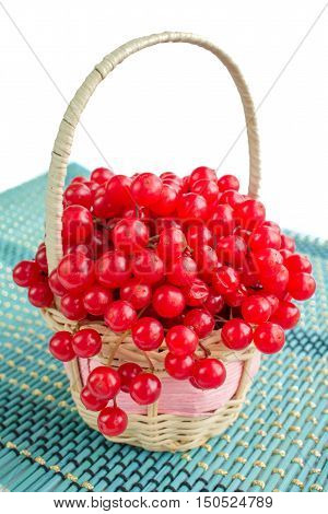 Red Guelder Rose Berries In Small Wicker On Blue Underlay